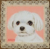 Andy_2