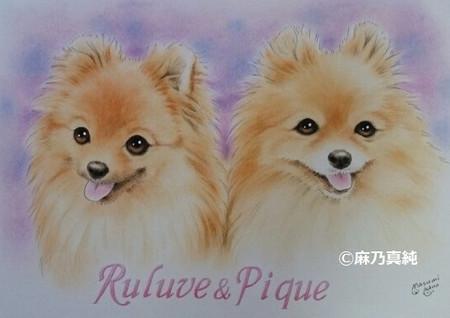 Rurube_pike